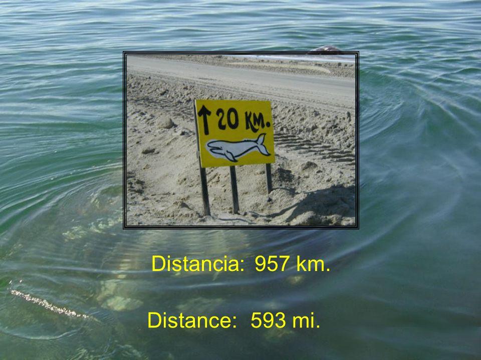 Distancia:957 km. Distance:593 mi.