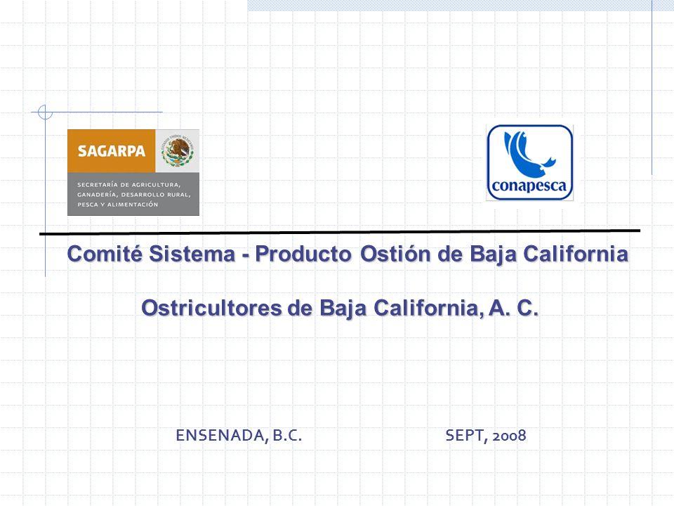 Comité Sistema - Producto Ostión de Baja California Comité Sistema - Producto Ostión de Baja California Ostricultores de Baja California, A. C. Ostric
