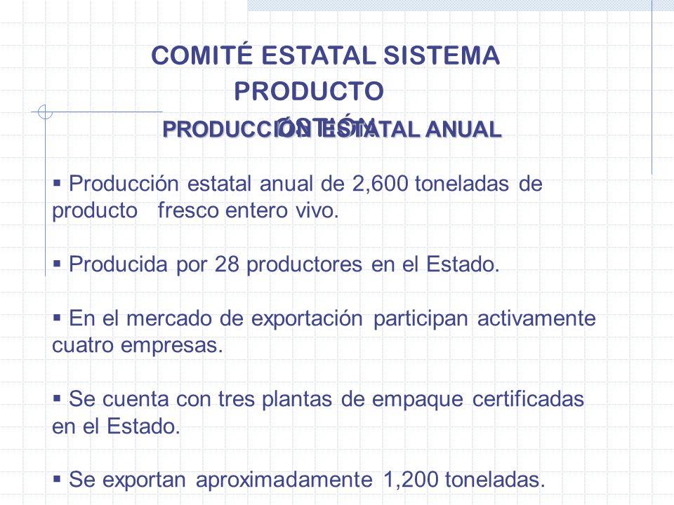 COMITÉ ESTATAL SISTEMA PRODUCTO OSTIÓN PRODUCCIÓN ESTATAL ANUAL PRODUCCIÓN ESTATAL ANUAL Producción estatal anual de 2,600 toneladas de producto fresc