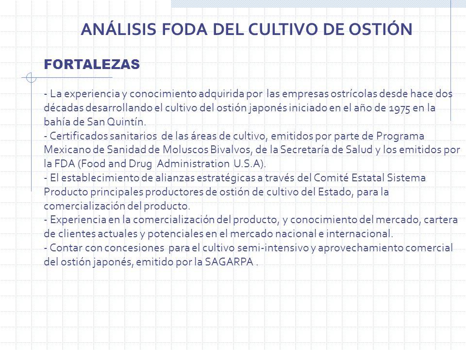 ANÁLISIS FODA DEL CULTIVO DE OSTIÓN FORTALEZAS - La experiencia y conocimiento adquirida por las empresas ostrícolas desde hace dos décadas desarrolla