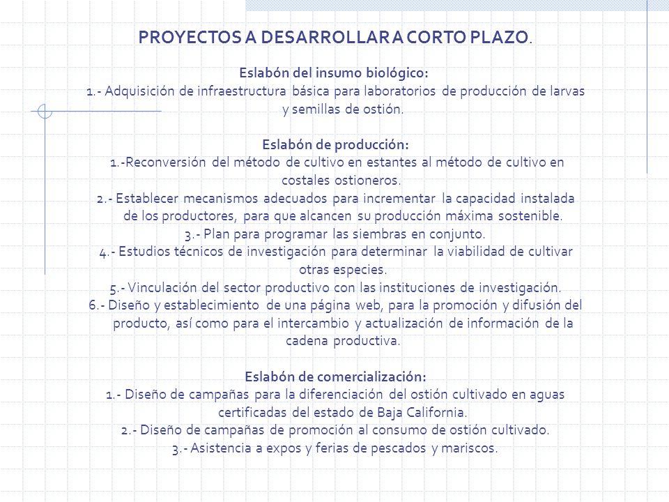 PROYECTOS A DESARROLLAR A CORTO PLAZO. Eslabón del insumo biológico: 1.- Adquisición de infraestructura básica para laboratorios de producción de larv