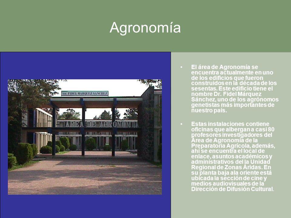 Agronomía El área de Agronomía se encuentra actualmente en uno de los edificios que fueron construidos en la década de los sesentas. Este edificio tie