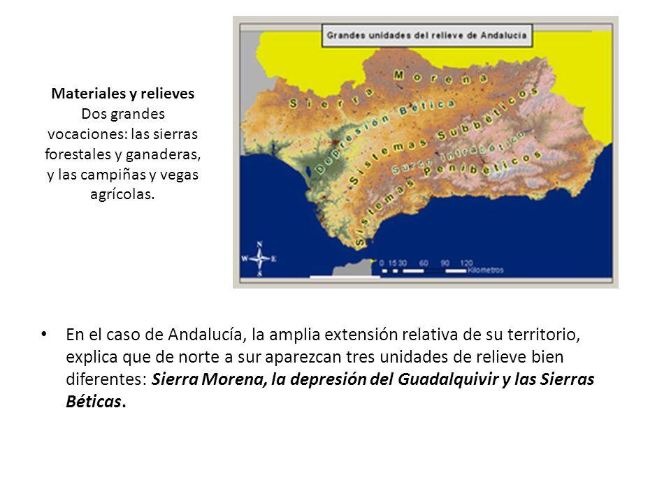 Materiales y relieves Dos grandes vocaciones: las sierras forestales y ganaderas, y las campiñas y vegas agrícolas. En el caso de Andalucía, la amplia