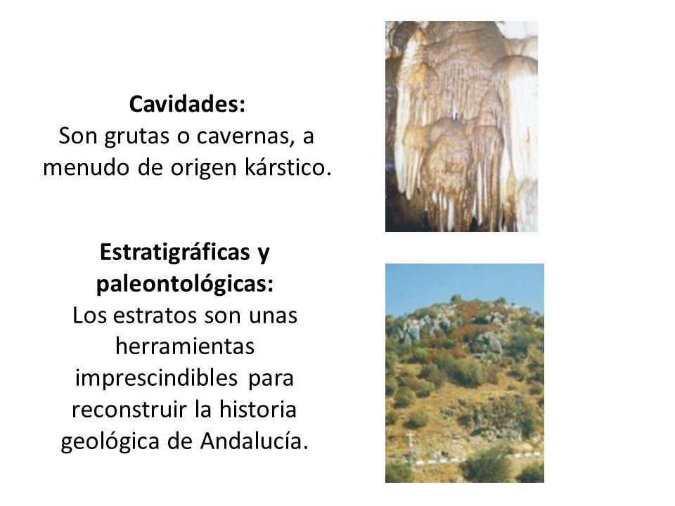 Cavidades: Son grutas o cavernas, a menudo de origen kárstico. Estratigráficas y paleontológicas: Los estratos son unas herramientas imprescindibles p