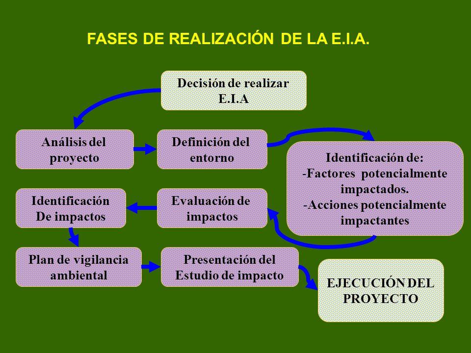 FASES DE REALIZACIÓN DE LA E.I.A. Decisión de realizar E.I.A Análisis del proyecto Definición del entorno Identificación de: -Factores potencialmente