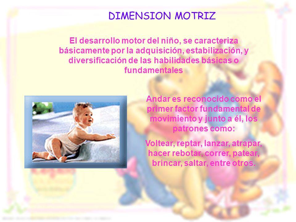 El desarrollo motor del niño, se caracteriza básicamente por la adquisición, estabilización, y diversificación de las habilidades básicas o fundamenta