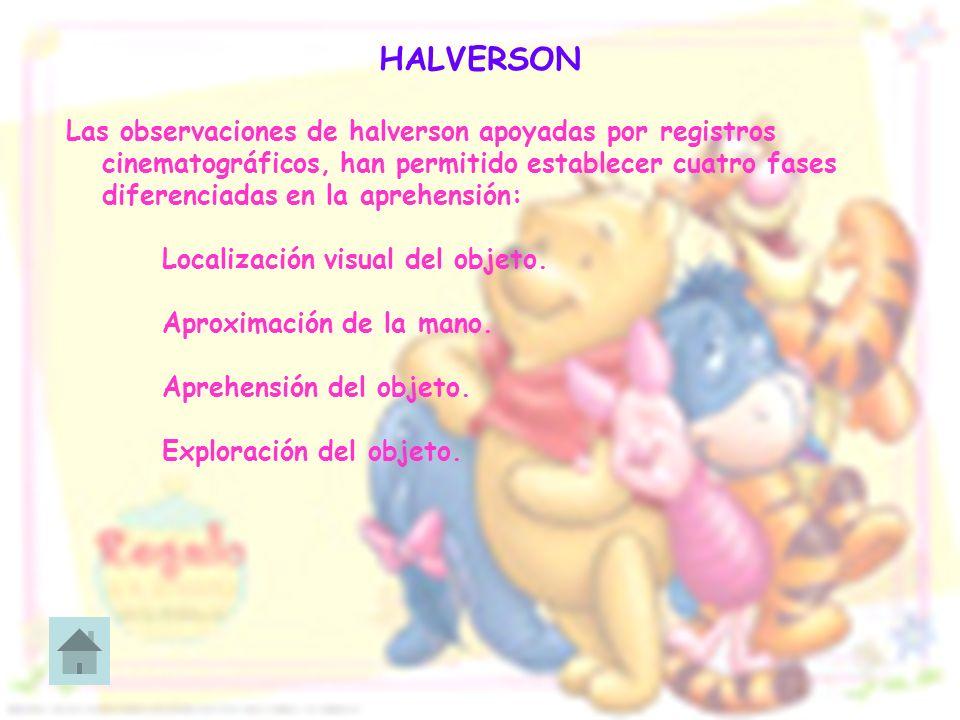 HALVERSON Las observaciones de halverson apoyadas por registros cinematográficos, han permitido establecer cuatro fases diferenciadas en la aprehensió