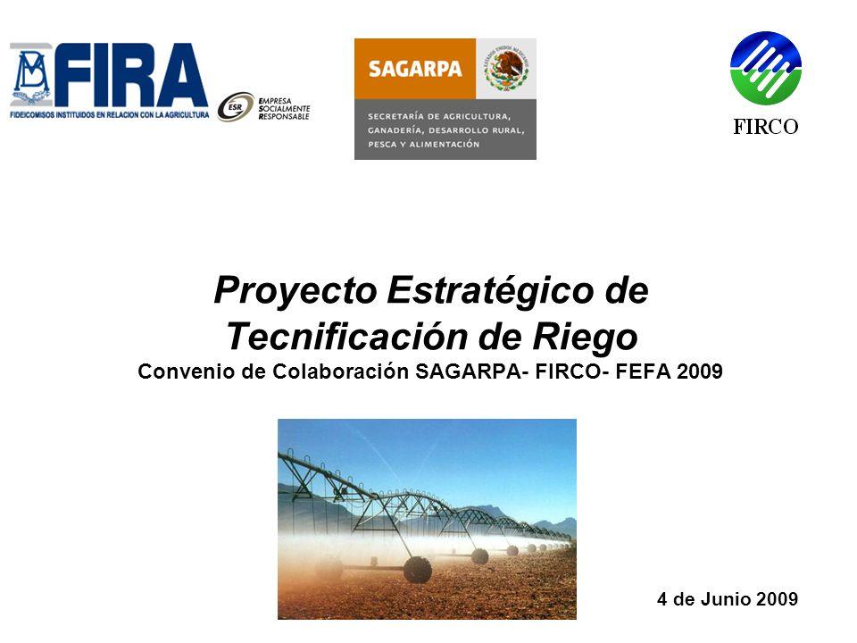 4 de Junio 2009 Proyecto Estratégico de Tecnificación de Riego Convenio de Colaboración SAGARPA- FIRCO- FEFA 2009