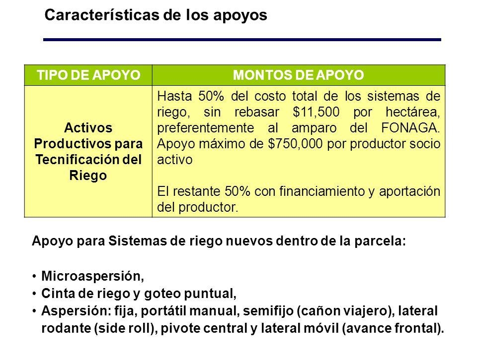 Características de los apoyos TIPO DE APOYOMONTOS DE APOYO Activos Productivos para Tecnificación del Riego Hasta 50% del costo total de los sistemas de riego, sin rebasar $11,500 por hectárea, preferentemente al amparo del FONAGA.