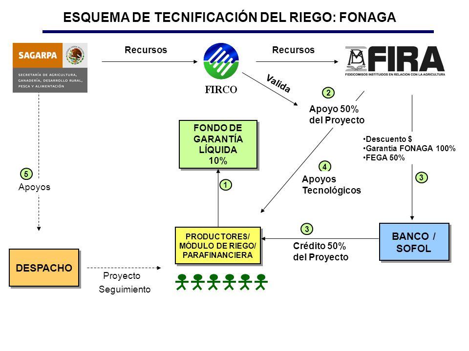 DESPACHO BANCO / SOFOL FONDO DE GARANTÍA LÍQUIDA 10% FONDO DE GARANTÍA LÍQUIDA 10% PRODUCTORES/ MÓDULO DE RIEGO/ PARAFINANCIERA PRODUCTORES/ MÓDULO DE RIEGO/ PARAFINANCIERA Proyecto Seguimiento Crédito 50% del Proyecto Apoyos Apoyo 50% del Proyecto 2 4 1 3 3 ESQUEMA DE TECNIFICACIÓN DEL RIEGO: FONAGA Apoyos Tecnológicos Descuento $ Garantía FONAGA 100% FEGA 50% 5 Recursos Valida