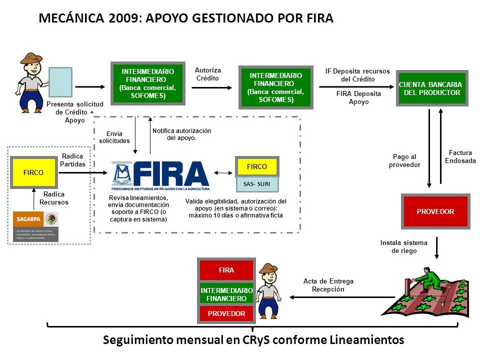 Presenta solicitud de Crédito + Apoyo Acta de Entrega Recepción Autoriza Crédito Instala sistema de riego PROVEDOR INTERMEDIARIO FINANCIERO (Banca comercial, SOFOMES) Pago al proveedor Seguimiento mensual en CRyS conforme Lineamientos 12 MECÁNICA 2009: APOYO GESTIONADO POR FIRA Revisa lineamientos, envía documentación soporte a FIRCO (o captura en sistema) INTERMEDIARIO FINANCIERO (Banca comercial, SOFOMES) Valida elegibilidad, autorización del apoyo (en sistema o correo): máximo 10 días o afirmativa ficta IF Deposita recursos del Crédito CUENTA BANCARIA DEL PRODUCTOR FIRA INTERMEDIARIO FINANCIERO PROVEDOR Envía solicitudes Notifica autorización del apoyo.