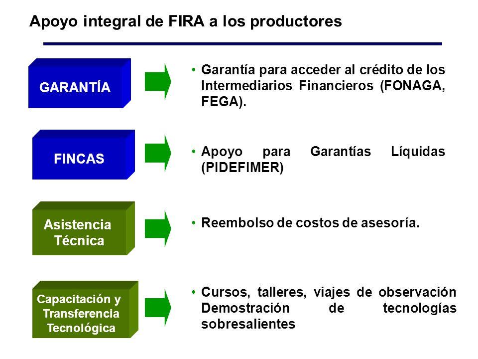 Apoyo integral de FIRA a los productores Apoyo para Garantías Líquidas (PIDEFIMER) Asistencia Técnica FINCAS Reembolso de costos de asesoría.