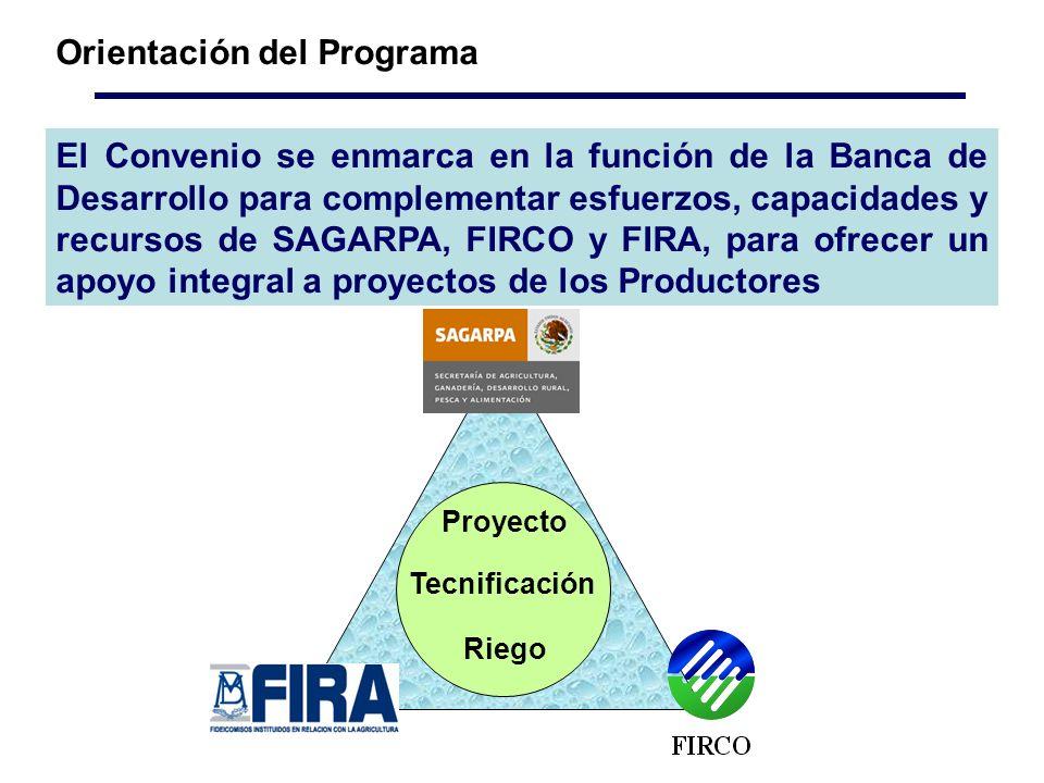 El Convenio se enmarca en la función de la Banca de Desarrollo para complementar esfuerzos, capacidades y recursos de SAGARPA, FIRCO y FIRA, para ofrecer un apoyo integral a proyectos de los Productores Orientación del Programa Proyecto Tecnificación Riego