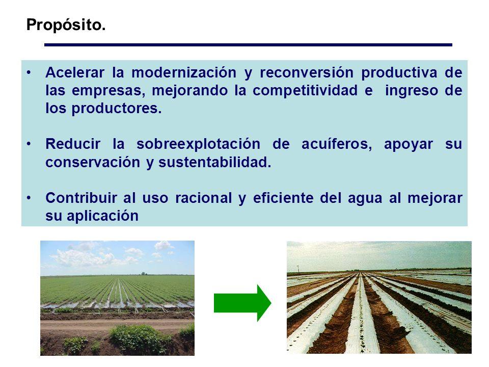 Acelerar la modernización y reconversión productiva de las empresas, mejorando la competitividad e ingreso de los productores.