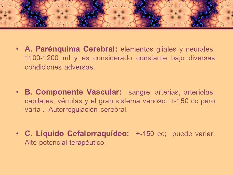 TEORIA DE MONRO - KELLY ( 1783 -1823) Vc + Vs + Vlcr = K Si, por alguna circunstancia, apareciera un nuevo volumen [Ve], los otros componentes han de disminuir el suyo, de forma que: Vc + Vs + Vlcr + Ve = K