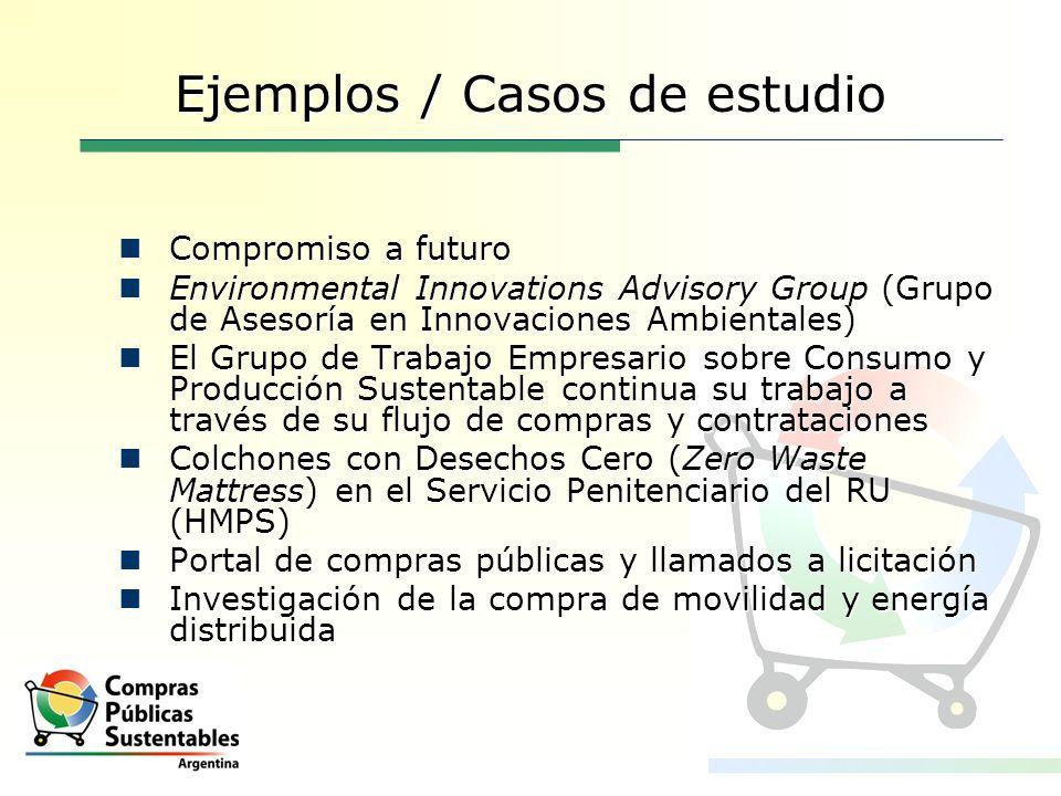 Ejemplos / Casos de estudio Compromiso a futuro Compromiso a futuro Environmental Innovations Advisory Group (Grupo de Asesoría en Innovaciones Ambien