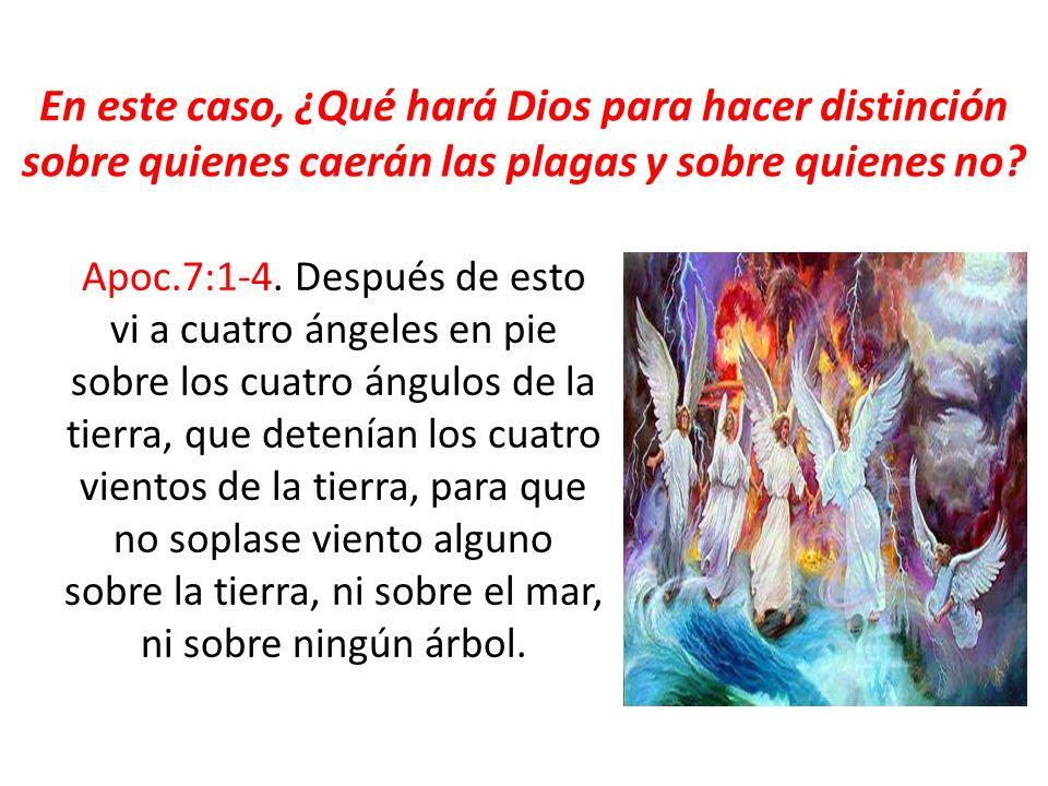 En este caso, ¿Qué hará Dios para hacer distinción sobre quienes caerán las plagas y sobre quienes no? Apoc.7:1-4. Después de esto vi a cuatro ángeles