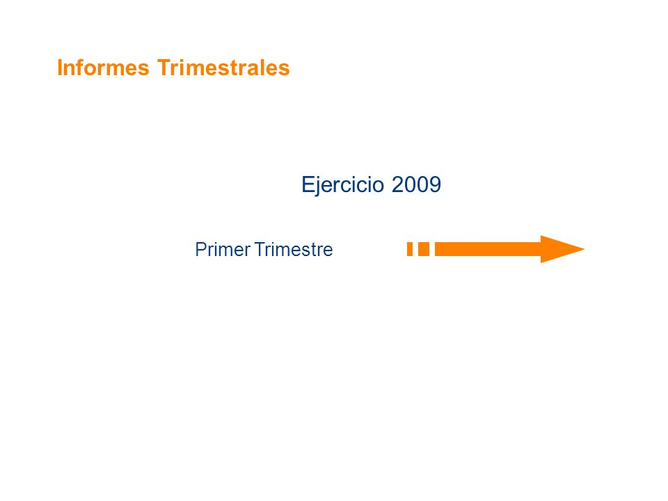 Informes Trimestrales Ejercicio 2009 Primer Trimestre