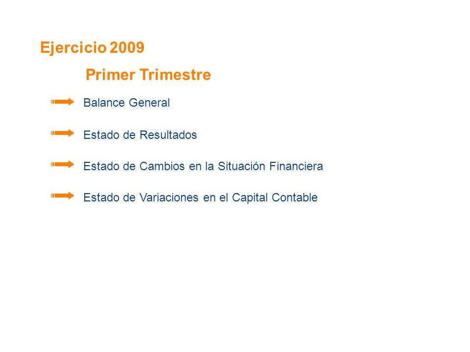 Ejercicio 2009 Balance General Estado de Resultados Estado de Cambios en la Situación Financiera Estado de Variaciones en el Capital Contable Primer T