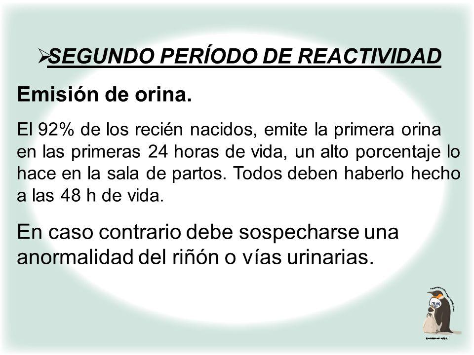 SEGUNDO PERÍODO DE REACTIVIDAD Emisión de orina y expulsión de meconio. Se debe pesquisar y anotar la emisión de la primera micción y la expulsión de