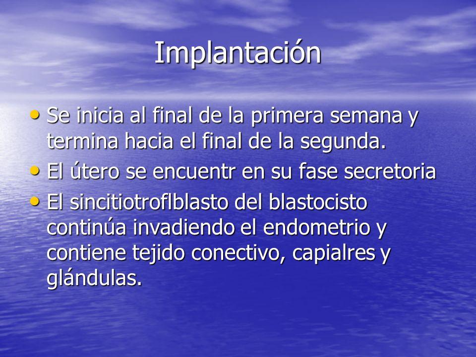 Implantación Se inicia al final de la primera semana y termina hacia el final de la segunda. Se inicia al final de la primera semana y termina hacia e