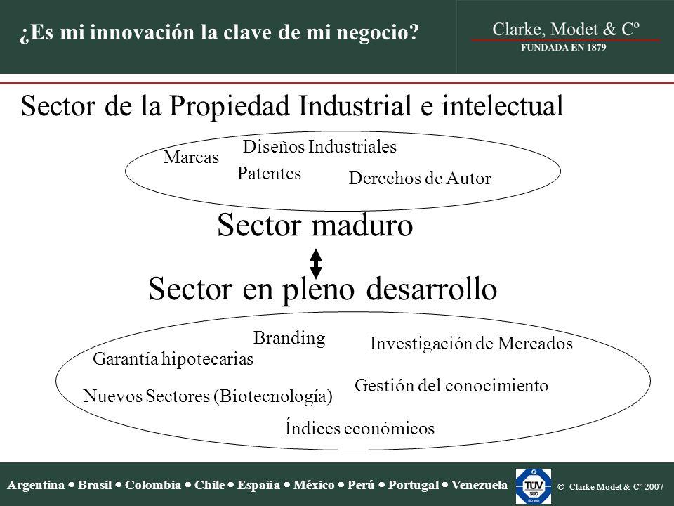 Argentina Brasil Colombia Chile España México Perú Portugal Venezuela © Clarke Modet & Cº 2007 ¿Es mi innovación la clave de mi negocio?