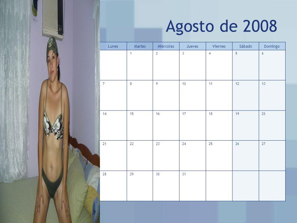 Agosto de 2008 LunesMartesMiércolesJuevesViernesSábadoDomingo 123456 78910111213 14151617181920 21222324252627 28293031