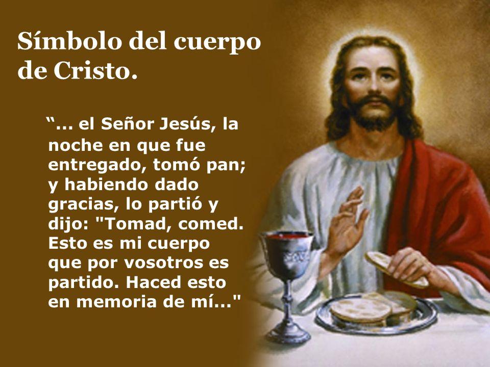 Símbolo del cuerpo de Cristo.... el Señor Jesús, la noche en que fue entregado, tomó pan; y habiendo dado gracias, lo partió y dijo: