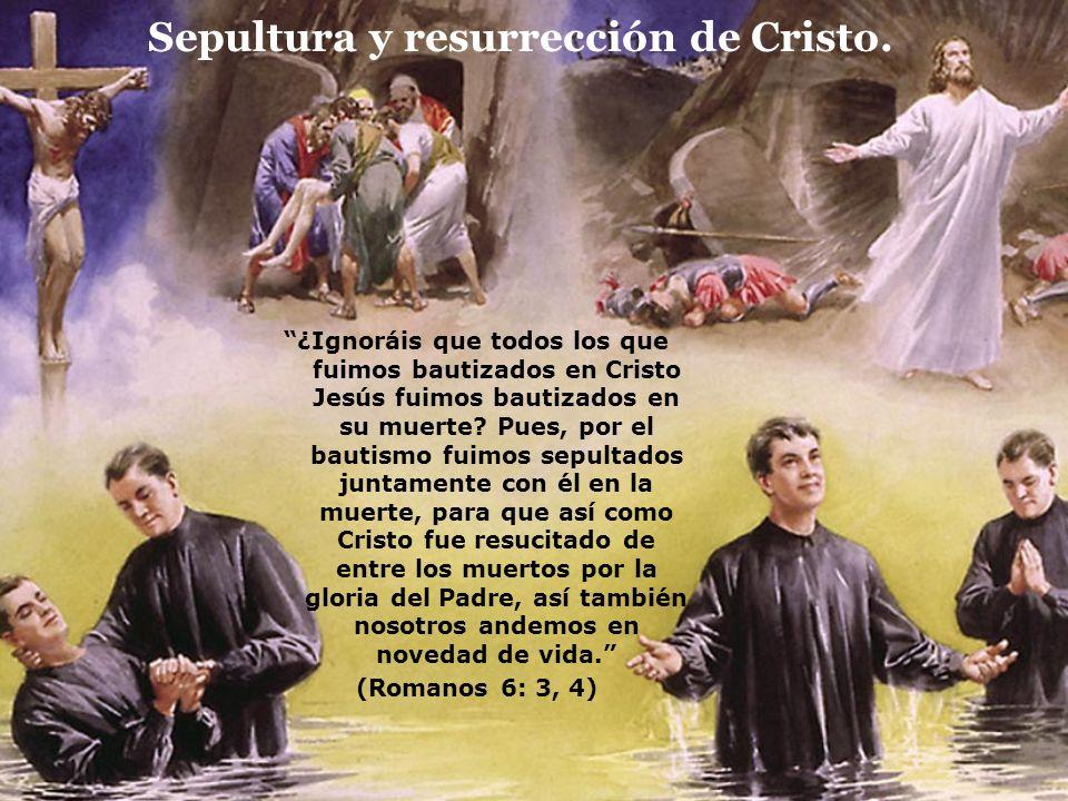 Sepultura y resurrección de Cristo. ¿Ignoráis que todos los que fuimos bautizados en Cristo Jesús fuimos bautizados en su muerte? Pues, por el bautism
