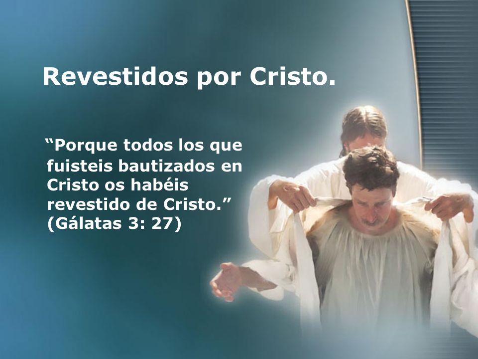 Revestidos por Cristo. Porque todos los que fuisteis bautizados en Cristo os habéis revestido de Cristo. (Gálatas 3: 27)