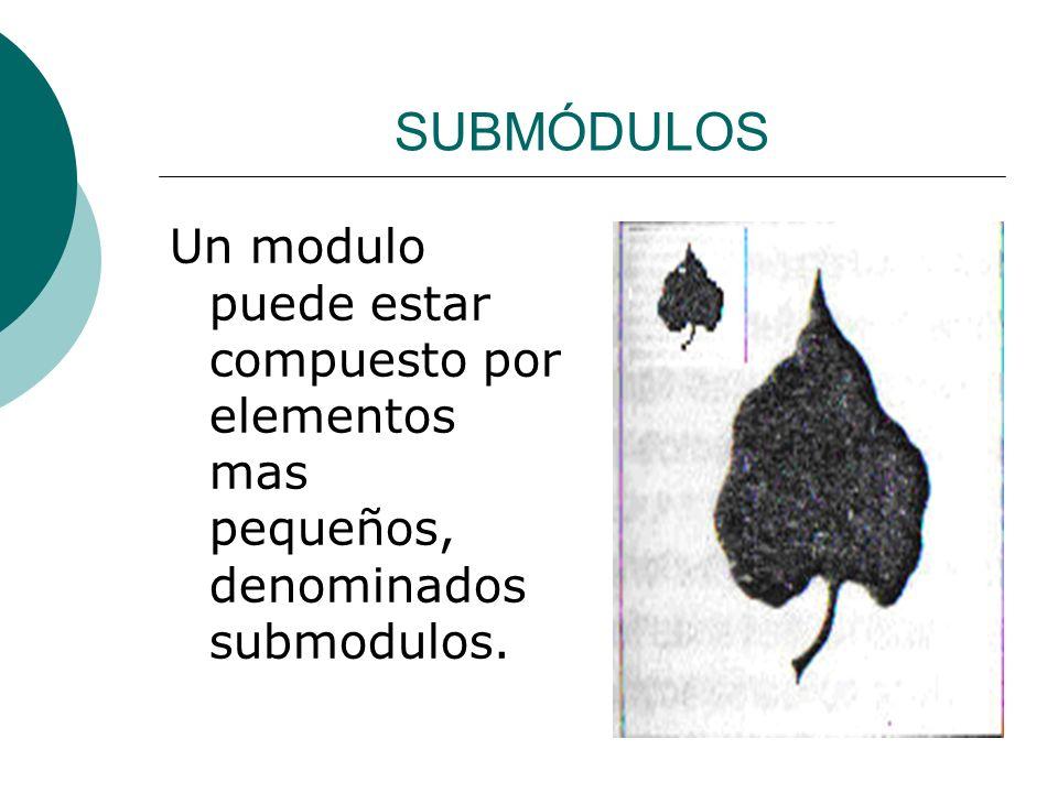 Licdo.Dip. Freddy R Castro Acosta SUBMÓDULOS Un modulo puede estar compuesto por elementos mas pequeños, denominados submodulos.