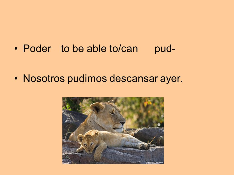 Poder to be able to/canpud- Nosotros pudimos descansar ayer.