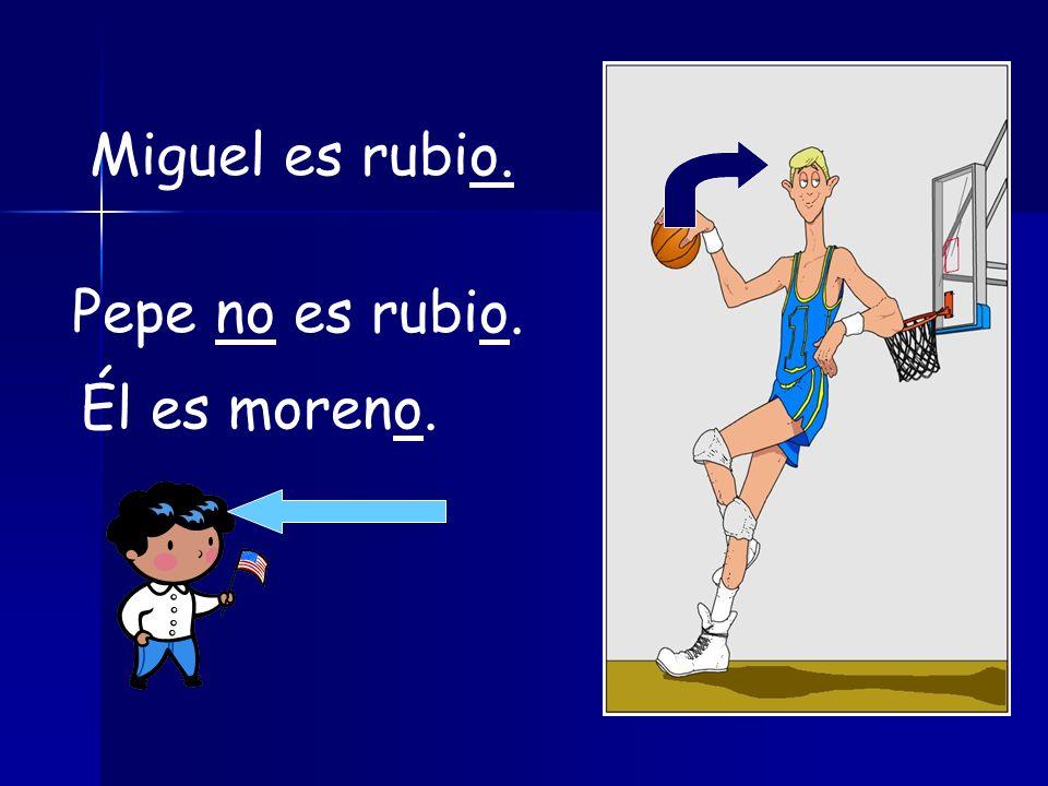 Miguel es rubio. Pepe no es rubio. Él es moreno.