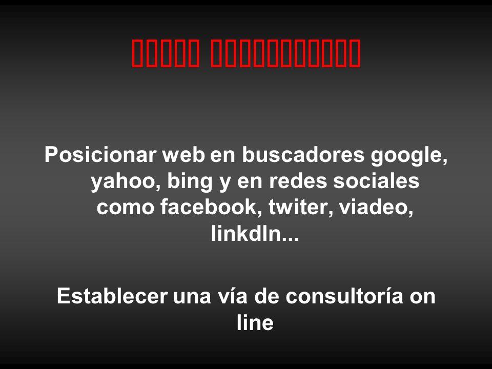 Canal Interactivo Posicionar web en buscadores google, yahoo, bing y en redes sociales como facebook, twiter, viadeo, linkdln... Establecer una vía de