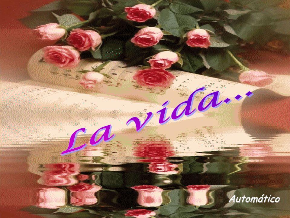 www.vitanoblepowerpoints.net Porque si sigues creyendo en ellos, tus sueños seguirán … Tratando de florecer en tí.