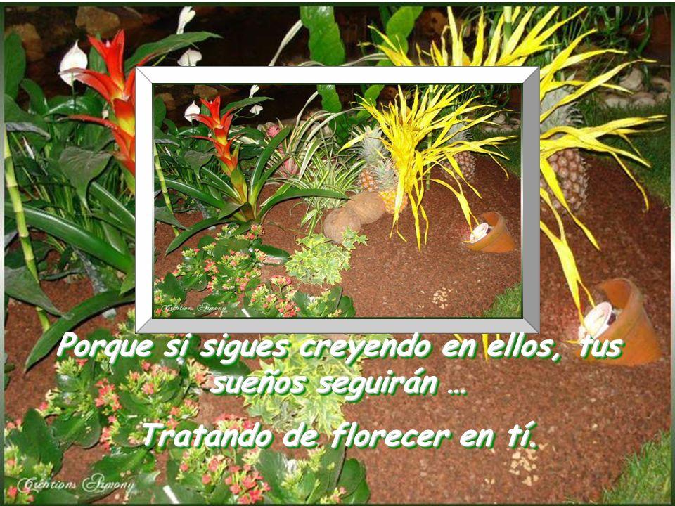 www.vitanoblepowerpoints.net Y que siempre sigas sembrando las semillas de tus sueños.