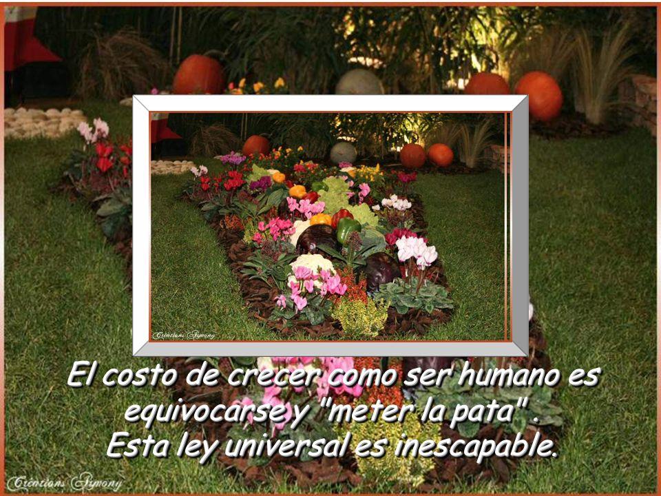 www.vitanoblepowerpoints.net Porque si sigues creyendo en ellos, tus sueños seguirán … Tratando de florecer en tí. Porque si sigues creyendo en ellos,