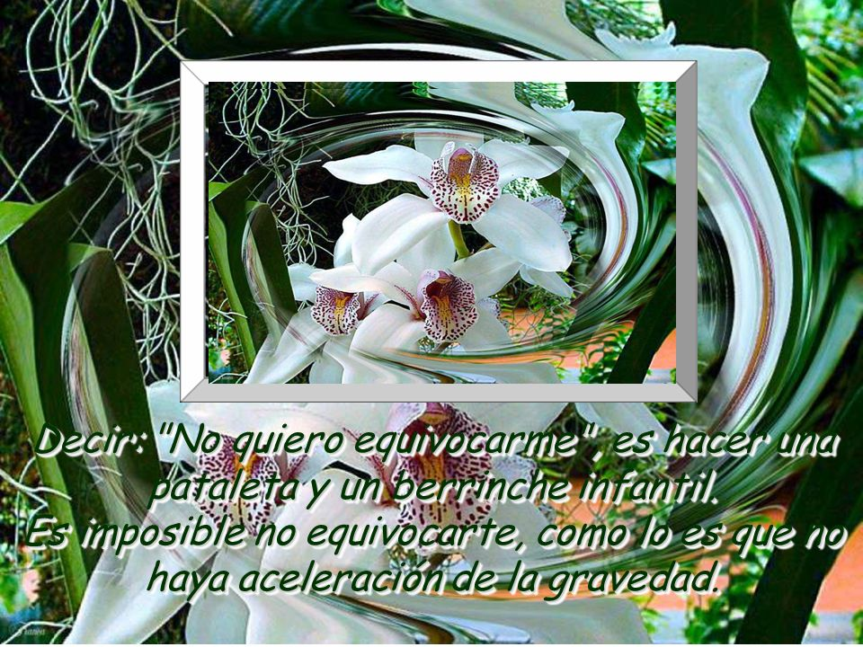 www.vitanoblepowerpoints.net El costo de crecer como ser humano es equivocarse y