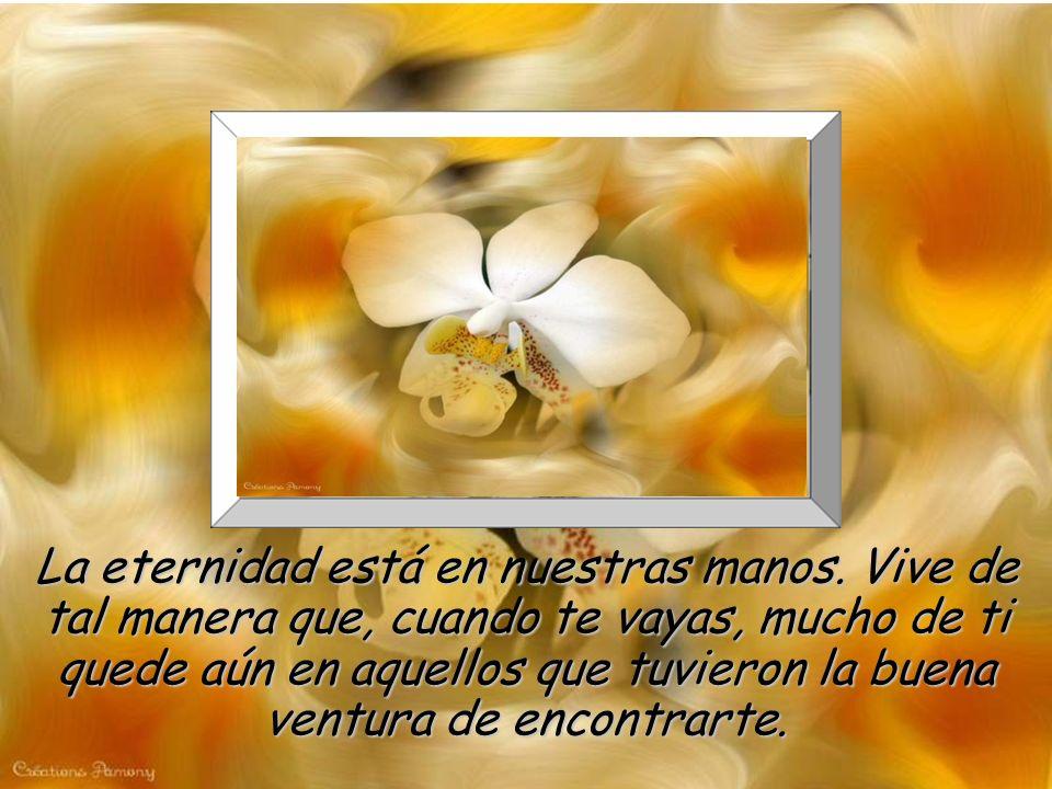 www.vitanoblepowerpoints.net Se bueno, intenta dar siempre el primer paso, nunca niegues una ayuda que esté a tu alcance, perdona y da todo de ti mism