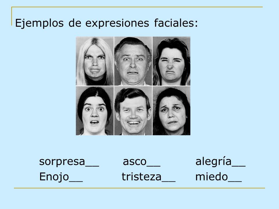 Ejemplos de expresiones faciales: sorpresa__ asco__ alegría__ Enojo__ tristeza__ miedo__