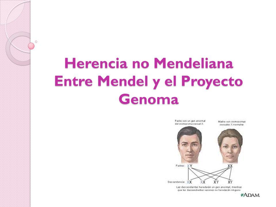 Herencia no Mendeliana En 1910 el biólogo Thomas Hunt Morgan escogió la mosca Drosophila melanogaster como medio para investigar algunos aspectos de Genética y confirmó que algunos rasgos, determinados genéticamente están ligados al sexo.
