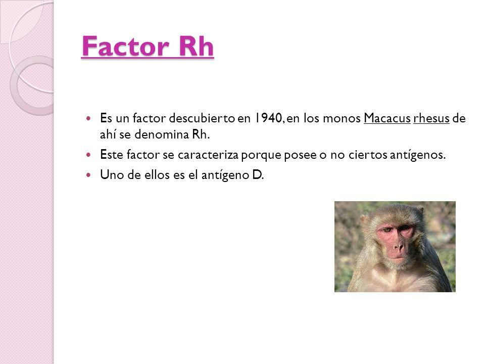 Es un factor descubierto en 1940, en los monos Macacus rhesus de ahí se denomina Rh. Este factor se caracteriza porque posee o no ciertos antígenos. U