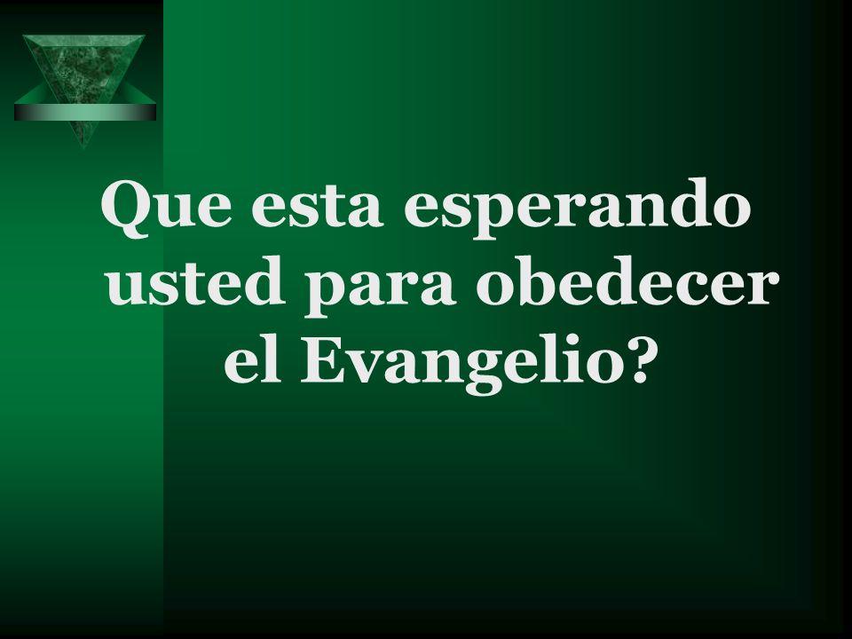 Que esta esperando usted para obedecer el Evangelio?