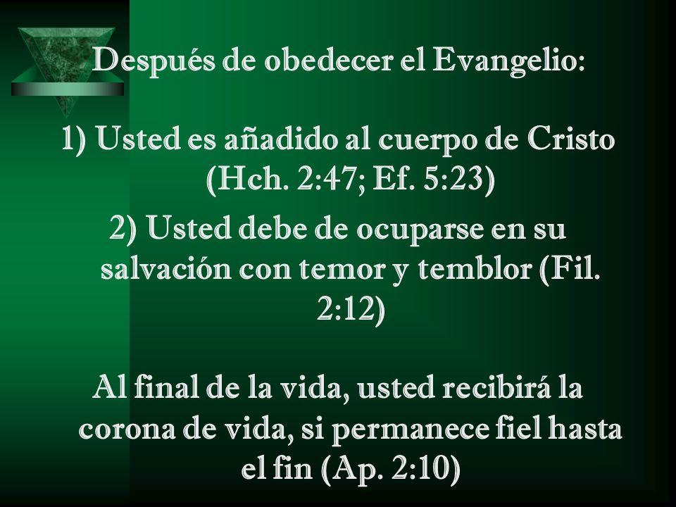 Después de obedecer el Evangelio: 1) Usted es añadido al cuerpo de Cristo (Hch. 2:47; Ef. 5:23) 2) Usted debe de ocuparse en su salvación con temor y