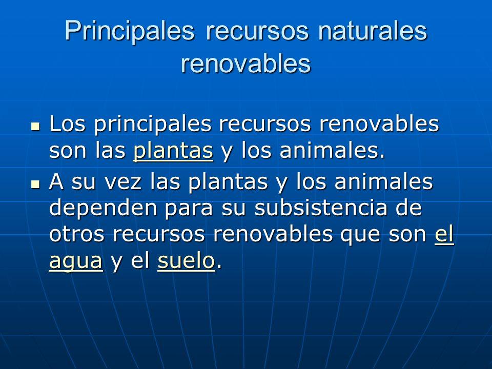 Principales recursos naturales renovables Los principales recursos renovables son las plantas y los animales. Los principales recursos renovables son