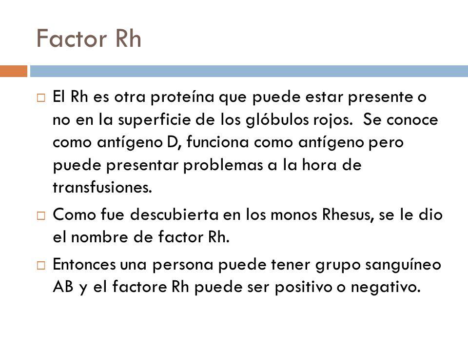 Factor Rh El Rh es otra proteína que puede estar presente o no en la superficie de los glóbulos rojos. Se conoce como antígeno D, funciona como antíge