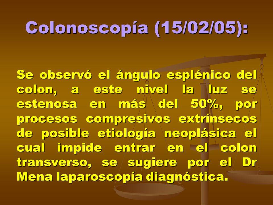 Colonoscopía (15/02/05): Se observó el ángulo esplénico del colon, a este nivel la luz se estenosa en más del 50%, por procesos compresivos extrínseco