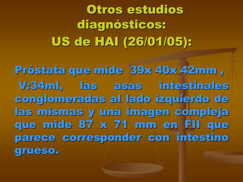 Otros estudios diagnósticos: US de HAI (26/01/05): Otros estudios diagnósticos: US de HAI (26/01/05): Próstata que mide 39x 40x 42mm, V:34ml, las asas