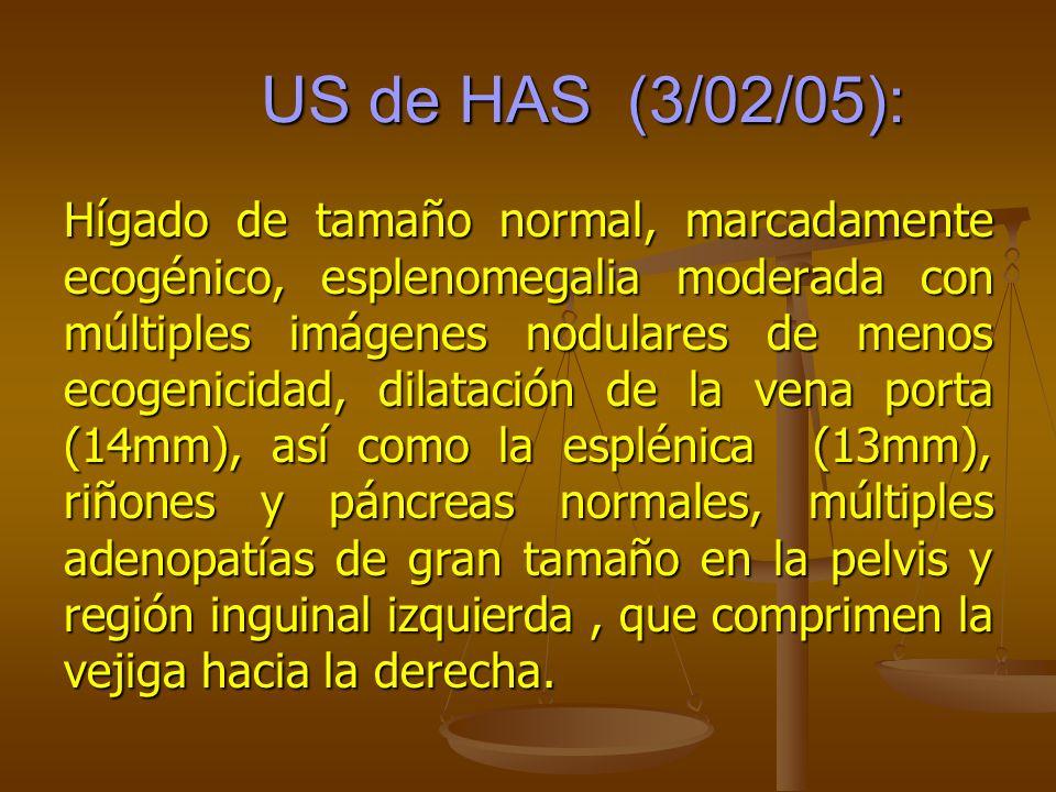 US de HAS (3/02/05): US de HAS (3/02/05): Hígado de tamaño normal, marcadamente ecogénico, esplenomegalia moderada con múltiples imágenes nodulares de