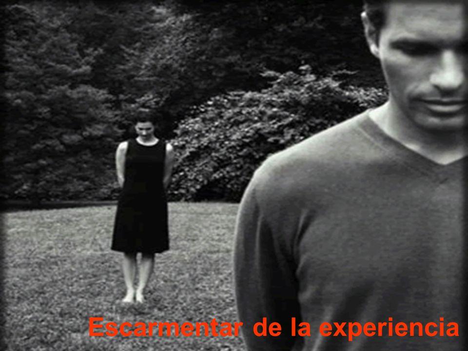 Escarmentar de la experiencia